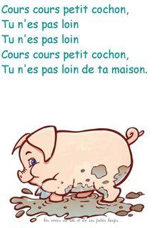 Cours cours petit cochon