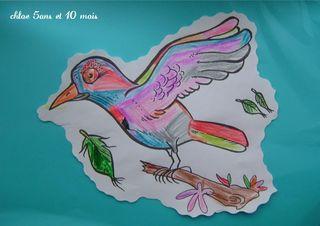 L'oiseau de chloe