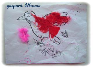 Oiseau de gaspard