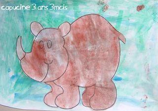 Le rhinoceros de capucine