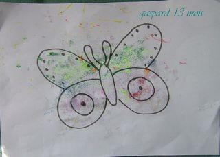Papillon gaspard