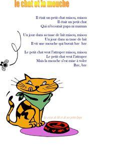 Le chat et la mouche