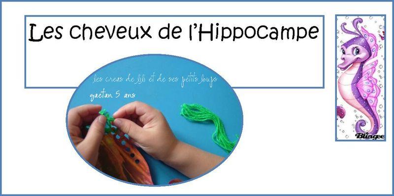 Les cheveux de l'hippocampe