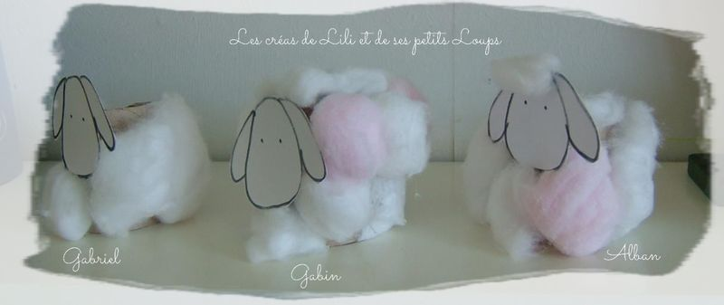 Nos petits moutons profil