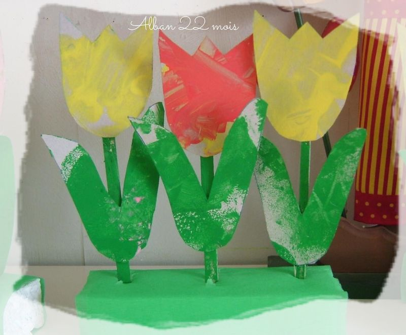 Les tulipes de gaétan
