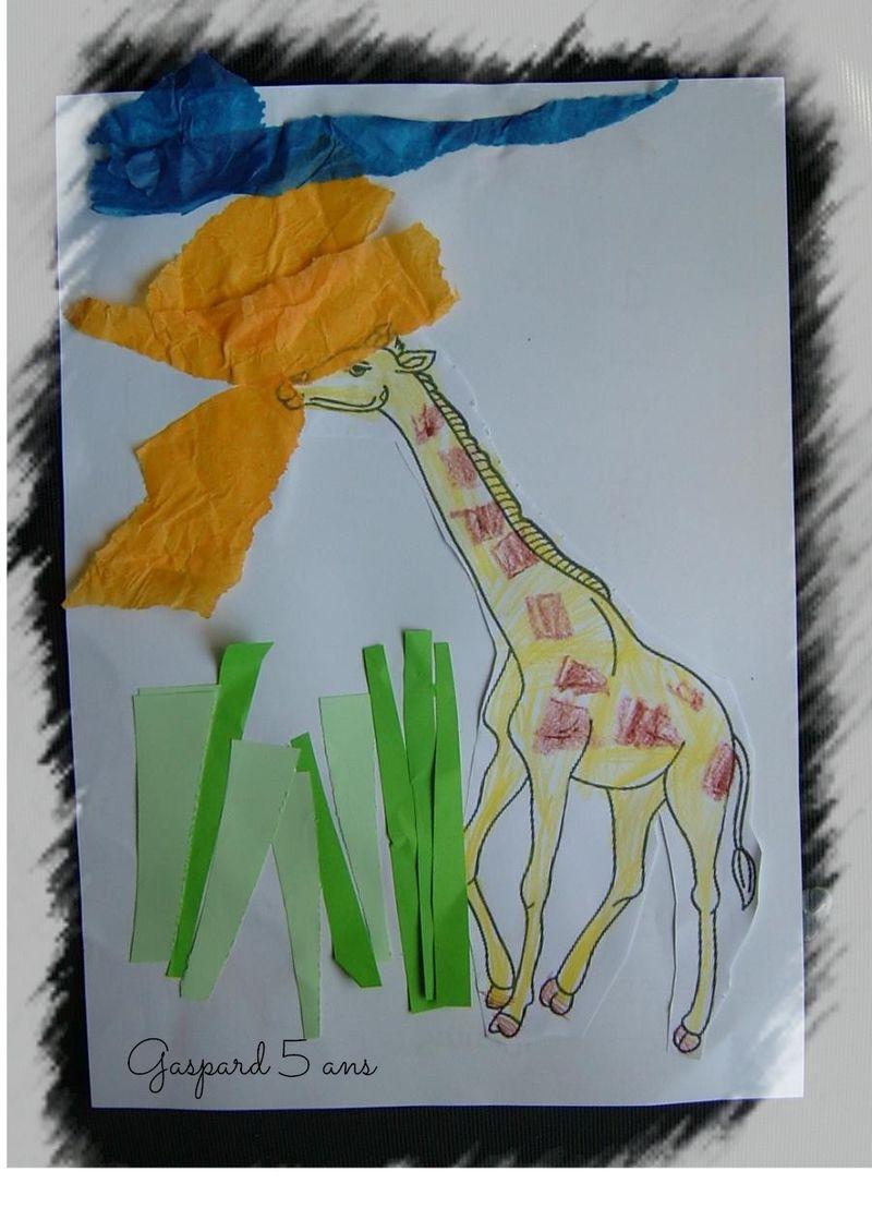 Girafe gaspard