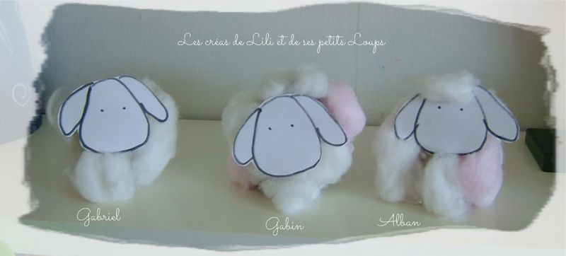 Nos petits moutons