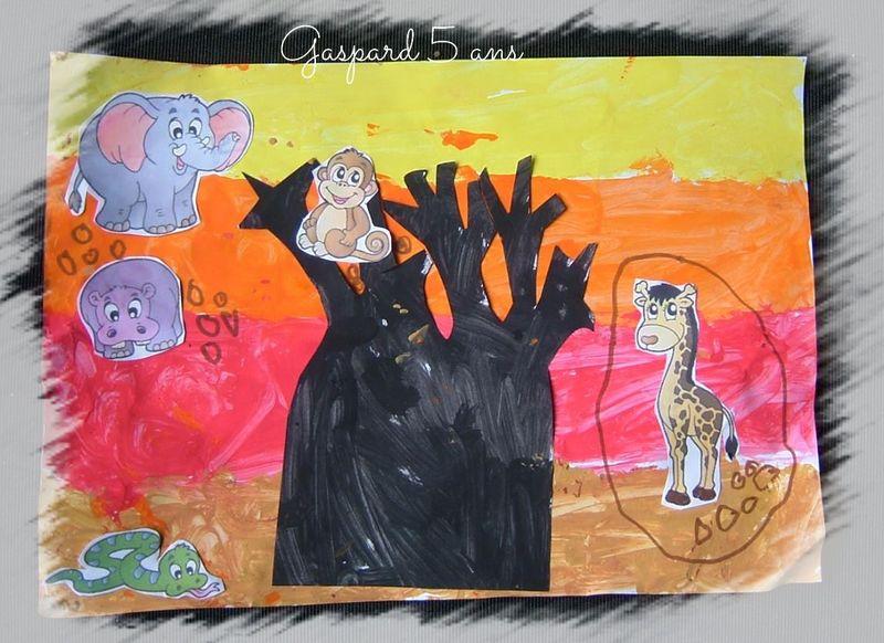 Baobab de gaspard