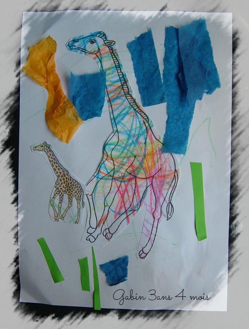 Girafe gabin