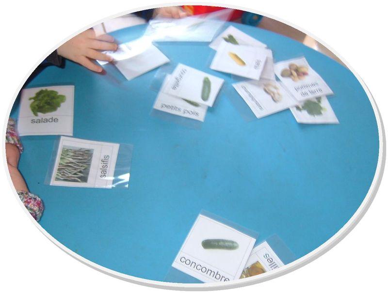 Les cartes legumes