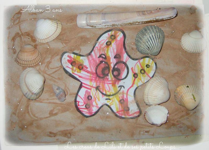 Petite etoile de mer  d'alban sur la plage