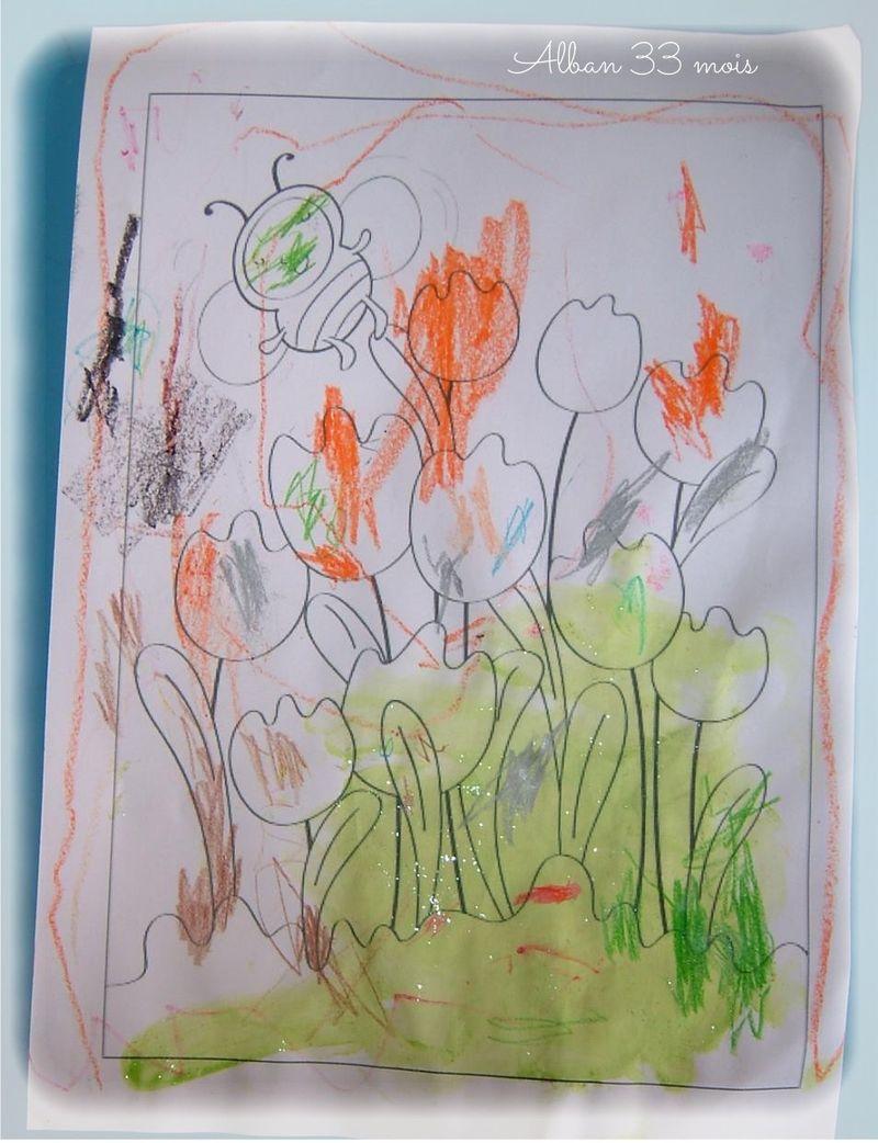 Les tulipes d'alban