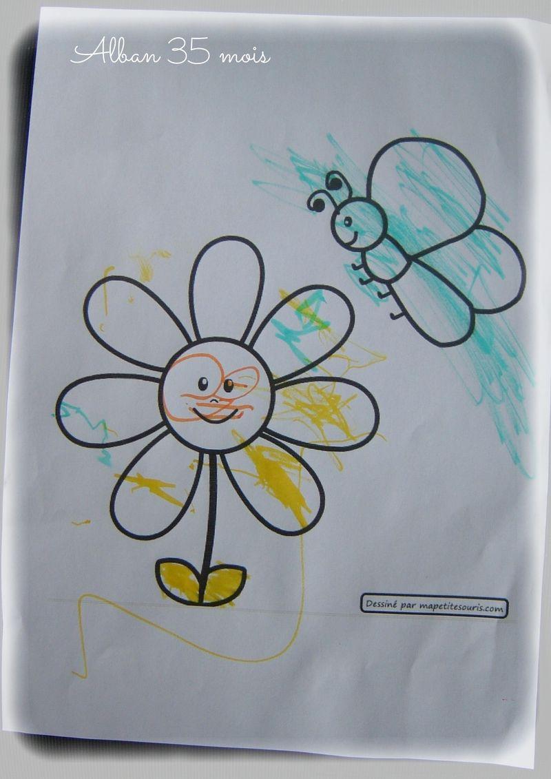 Fleur papillon alban