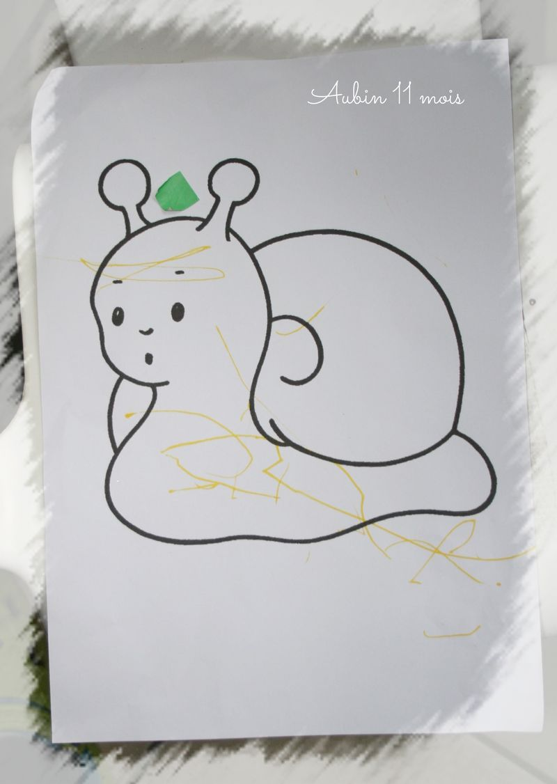 Le coloriage escargot d'aubin