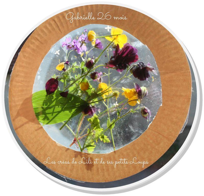 Vitrail fleurs gabrielle
