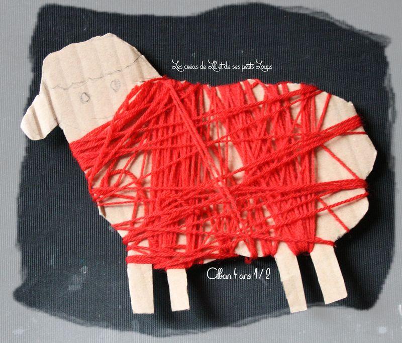Un pull pour mon mouton alban