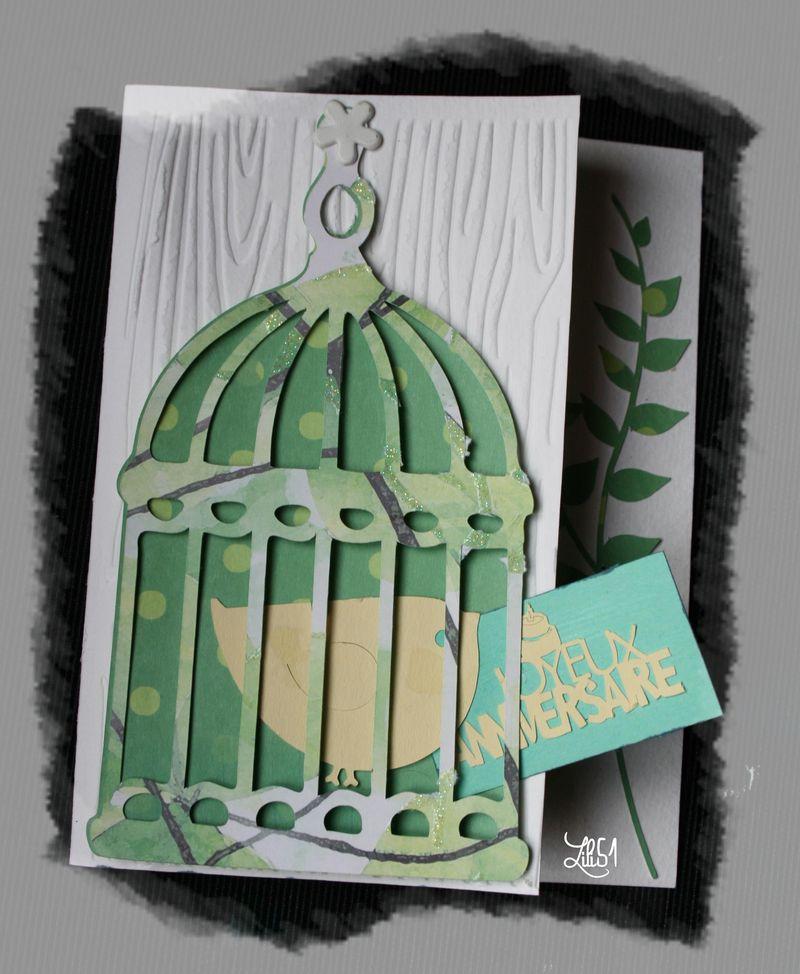 Carte cage alexis 6 ans