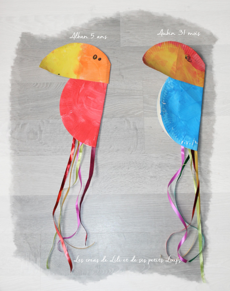 Perroquet des corsaires