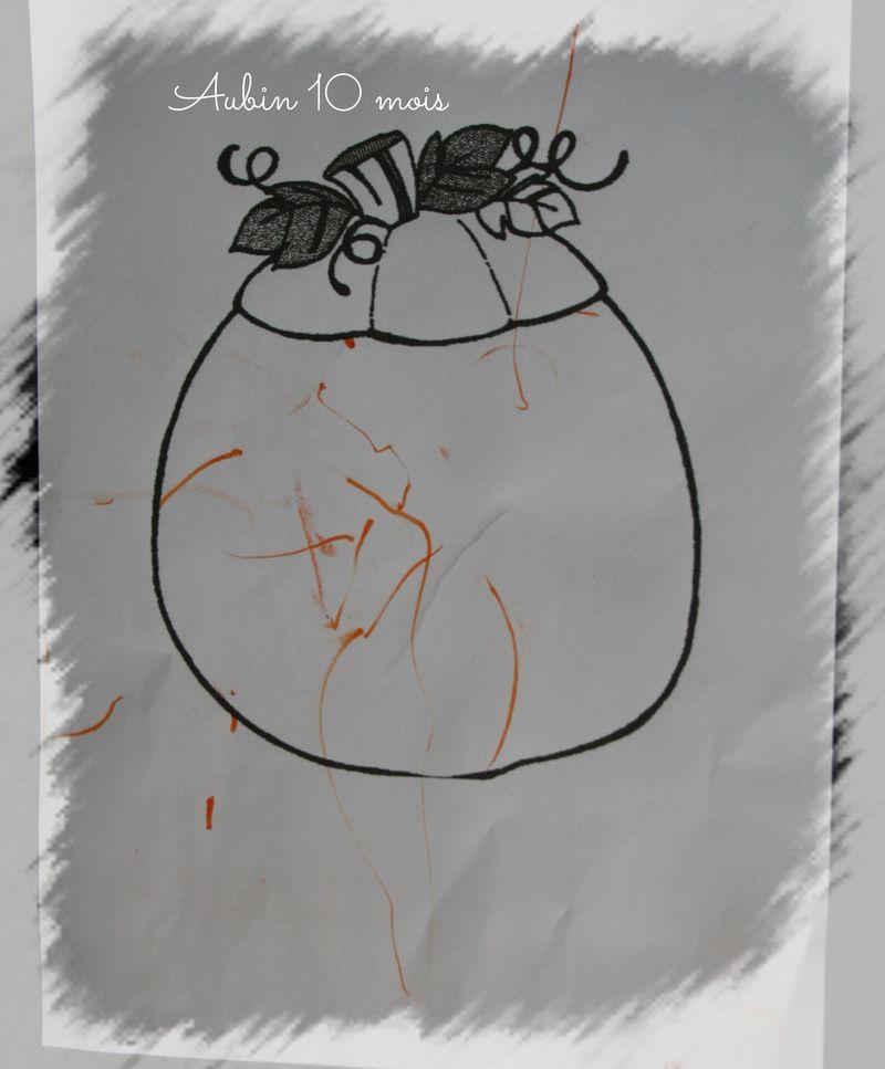 Citrouille aubin
